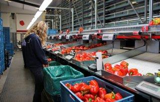 Greenport+West%2DHolland+helpt+jongeren+bij+overname+bedrijf
