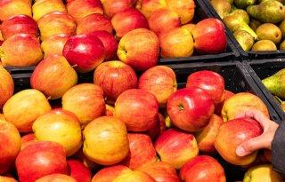 Contrasterende+evolutie+Belgische+landbouwprijzen