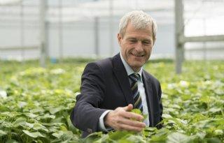 HZPC: EU-wetgeving te oud voor betere plantenveredeling