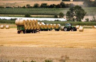 DBV%3A+%27Houd+rekening+met+economische+behoeften+landbouw%27
