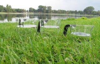 Waterschap+De+Dommel+bestrijdt+droogte+samen+met+boeren