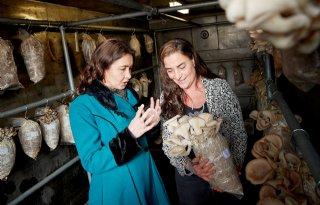 ZuiderZwam krijgt Agrofoodpluim van provincie Noord-Brabant