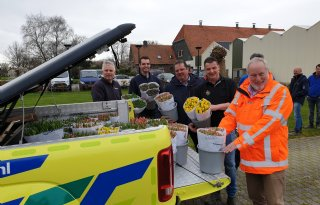 Flevolandse telers delen half miljoen tulpen uit