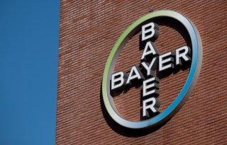 Bayer brengt biologische groentezaden op de markt