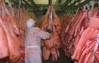 Exportwaarde+varkensvlees+in+2019+ruim+10+miljard+euro