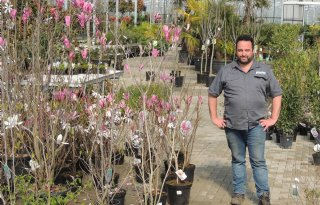 Corona maakt eind aan drukte bij tuincentrum Bannenberg