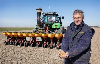 Flevolandse+boeren+pionieren+met+teelt+van+veldboon