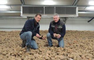 Mechanische+koeling+voor+tiptop%2Dkwaliteit+aardappelen