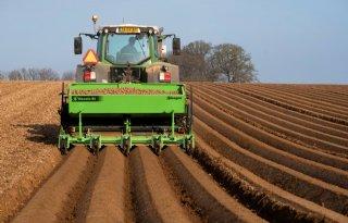 NEPG: aardappelareaal daalt 3 tot 5 procent