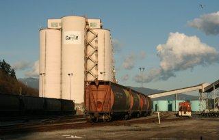 Activisten+willen+dat+Ahold+breekt+met+agroreus+Cargill