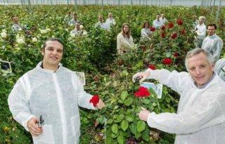 Bloemenhandel+en+Ali+B+verrassen+eenzame+ouderen