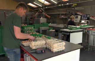 Pluimveehouder: 'Eieren zijn niet aan te slepen'