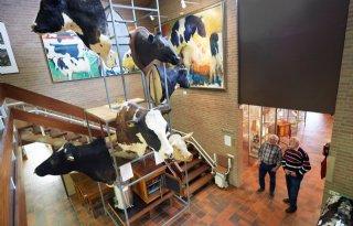Sunny+Boy+en+Kian+naar+Fries+Landbouwmuseum