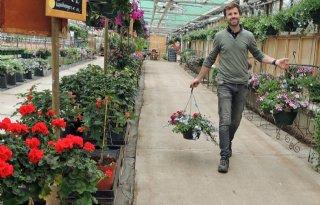 Kwekerij+in+Helmond+verkoopt+alle+planten+in+twee+maanden