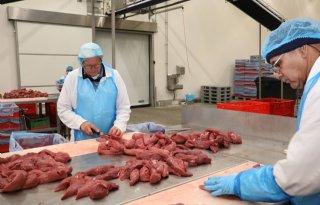 Belgische+vleesverwerker+Westvlees+meldt+67+besmettingen