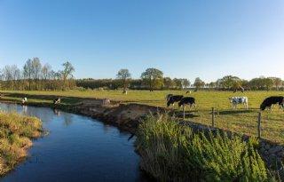 Boeren+Vechtdal+aan+de+tand+gevoeld+over+coronacrisis
