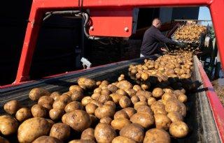 WUR: mondiale vraag naar voedsel stijgt fors tot 2050