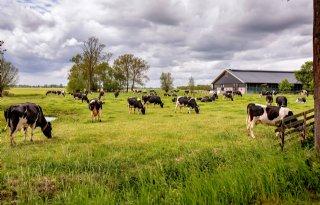 Meer dan helft boeren heeft geen opvolger