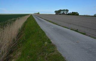 Verzilting+zorgt+voor+1%2E166+euro+schade+per+hectare+aardappelen