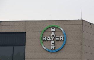 Bayer+Crop+Science+sluit+derde+kwartaal+af+met+verlies