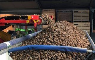 Nieuwe+kiemremmer+voor+aardappelen%3A+Argos