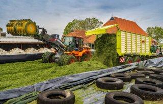 Melkveespecialist Bakker: 'Snel maaien voordat gras verhout'