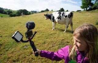 Jonge+filmmaker+wint+prijs+met+vlog+over+weidegang