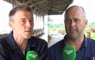 Melkveehouders uiten zorgen over voermaatregel