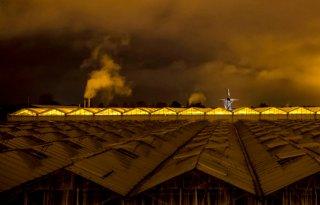 WER%3A+prognoses+CO2%2Demissie+glastuinbouw+moeten+worden+bijgesteld