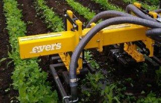 Evers%2Dmachine+voor+bemesten+en+schoffelen+maisland