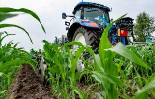 Extra stikstofgift voor groei zonder verliezen