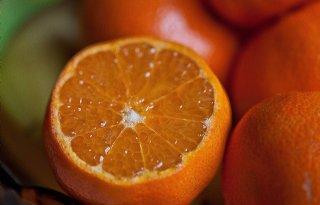 Sinaasappelolie+verslaat+plaaginsecten