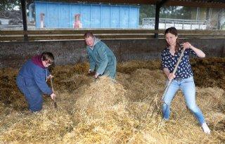 Melkveehouder Jansen: 'Horeca moet wel beetje boers blijven'