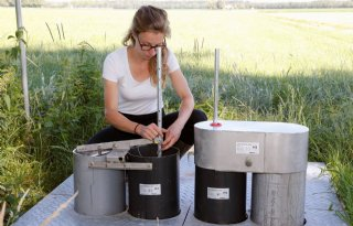 De droogte te lijf met subirrigatie