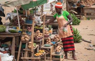 Coronavirus sloopt Afrikaanse voedselketen