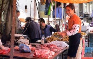 Minder+varkens+naar+China+na+importstop+vanwege+corona