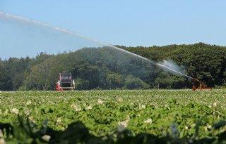 NWO+trekt+beurs+voor+onderzoek+naar+klimaatrobuuste+landbouw
