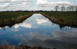 Duitse waterkwaliteit gaat goede kant op