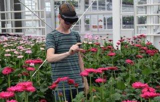 AR-bril vertelt of teler de gerbera kan oogsten