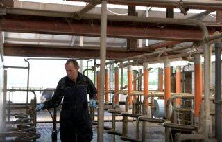 Melkveehouder+Van+Bergen%3A+%27Met+dit+stalplan+houd+ik+grip+op+vliegenoverlast%27