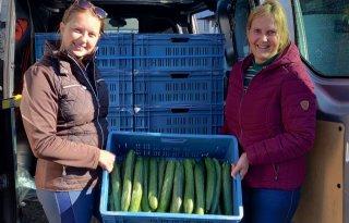 Tuinders+helpen+cli%C3%ABnten+aan+verse+groenten