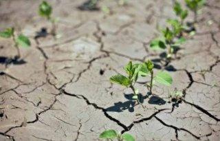 Klimaatverandering intensiveert, grens voor landbouw bereikt