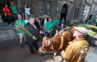 Toch+gladiolen+aan+de+man+in+Nijmegen