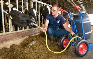 Hoeveelheid vocht bij koe opschroeven met drench
