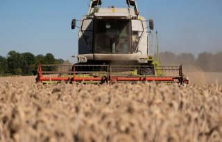 VN+wil+431%2C6+miljard+euro+aan+landbouwsubsidie+anders+inzetten