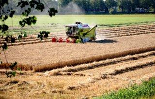 Studiegroep: 'Bescherm landbouwgrond tegen functieverandering'