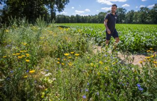 Loonwerker positief over 'Groen, productief en levend Limburg'
