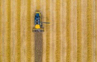 USDA+verwacht+verdere+daling+tarwevoorraden