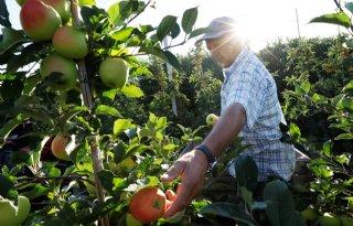 Voedselproductie is nationaal belang