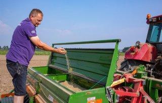 Groenbemester zaaien na uienoogst
